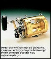 Multiplikator do Big Game